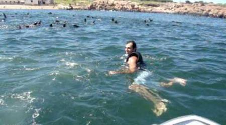 Punta del Este (Uruguay), in barca a vela assieme ai leoni marini